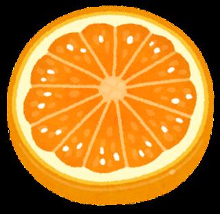 fruit_slice10_orange.png